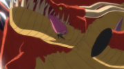Zoro Décapite le Dragon Numéro Treize Anime