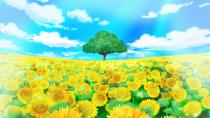 Flower Hill Field