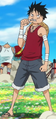 Luffy's Post-Dressrosa Outfit
