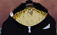 Neko Neko no Mi, Leopard