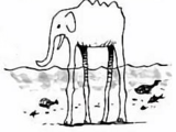Specie animali/Saga degli imperatori