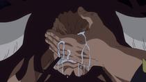 Кайдо опечален утратой Дофламинго