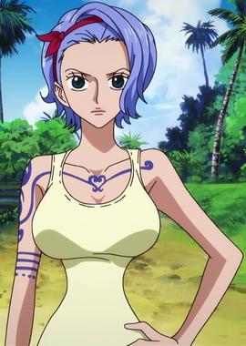 Nojiko Anime Pra Timeskip Infobox