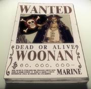Woonan Avis de Recherche