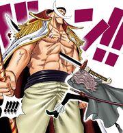 Squard Stabs Whitebeard Manga