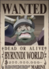 Byrnnidi World former bounty
