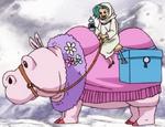 Hippo-Camel