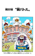 Chapter 257 Colored