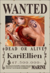 KariEllien Wanted Poster