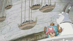 Chopper e visoni curano Zunisha