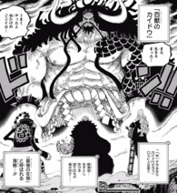 Kid Alliance facing Kaido