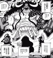Kid Alliance facing Kaido