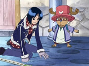 Tashigi sucht ihre Brille, die Chopper nach dem Zusammenstoß auf der Nase sitzt