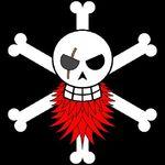 Redbeard Pirates Jolly Roger
