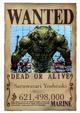 Shoun wanted poster2