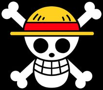 Straw Hat Pirates Jolly Roger