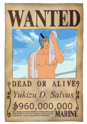 SalvusWanted