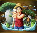Monkey D. Luffy Crew's Promise: 3D2Y