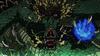 Niveau Dragon