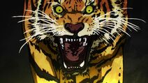 Niveau Tigre