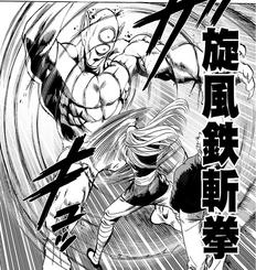 Whirlwind Iron Cutting Fist