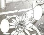 Himaaku