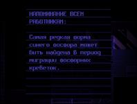 Запись10