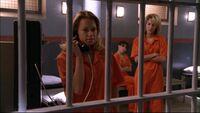 309 p h n b in jail