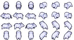 -Animal-Bear Snow