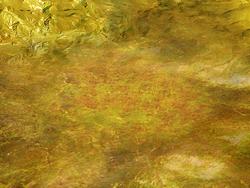 Item2 terrain-radioactive
