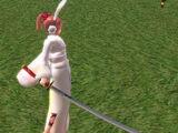 Nameless Sword
