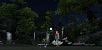 Evening of Fireflies 3