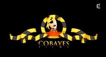 Cobayes-films