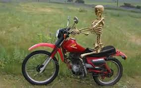 File:Skelly Bike.jpeg