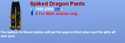 SpikedDragonPants