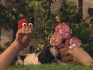 Oobi-Kako's-Puppy-Kako-comes-back