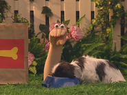 Oobi-Kako's-Puppy-snack