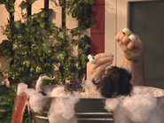 Oobi-Kako's-Puppy-bath