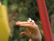 Oobi-Uma-Swing-Oobi-watching-Uma