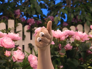 Oobi-Garden-Day-thumbs-up