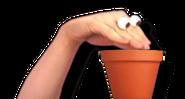Oobi-planting-seed-sprite