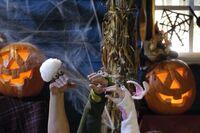 Oobi Kako Uma Halloween! Noggin Nick Jr Hand Puppet Characters