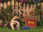 Oobi-Kako's-Puppy-dog-food