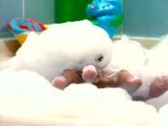 Oobi-shorts-Bubble-Bath-Kako-the-monster