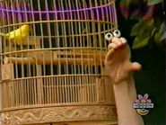 Oobi-shorts-Bird-Uma-singing