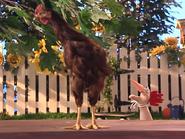 Oobi-Uma-Chicken-no-fun
