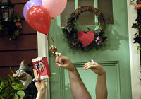 Oobi Inka Uma Grampu Noggin Nick Jr Hand Puppet TV Show Series Characters
