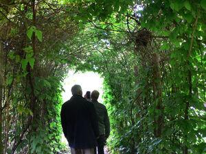 E.V.A. Lanxmeer VegetalPath3 2009