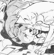 Hideharu vs. Kagura