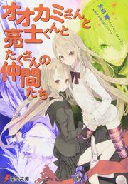 Light Novel Volume 12 Cover